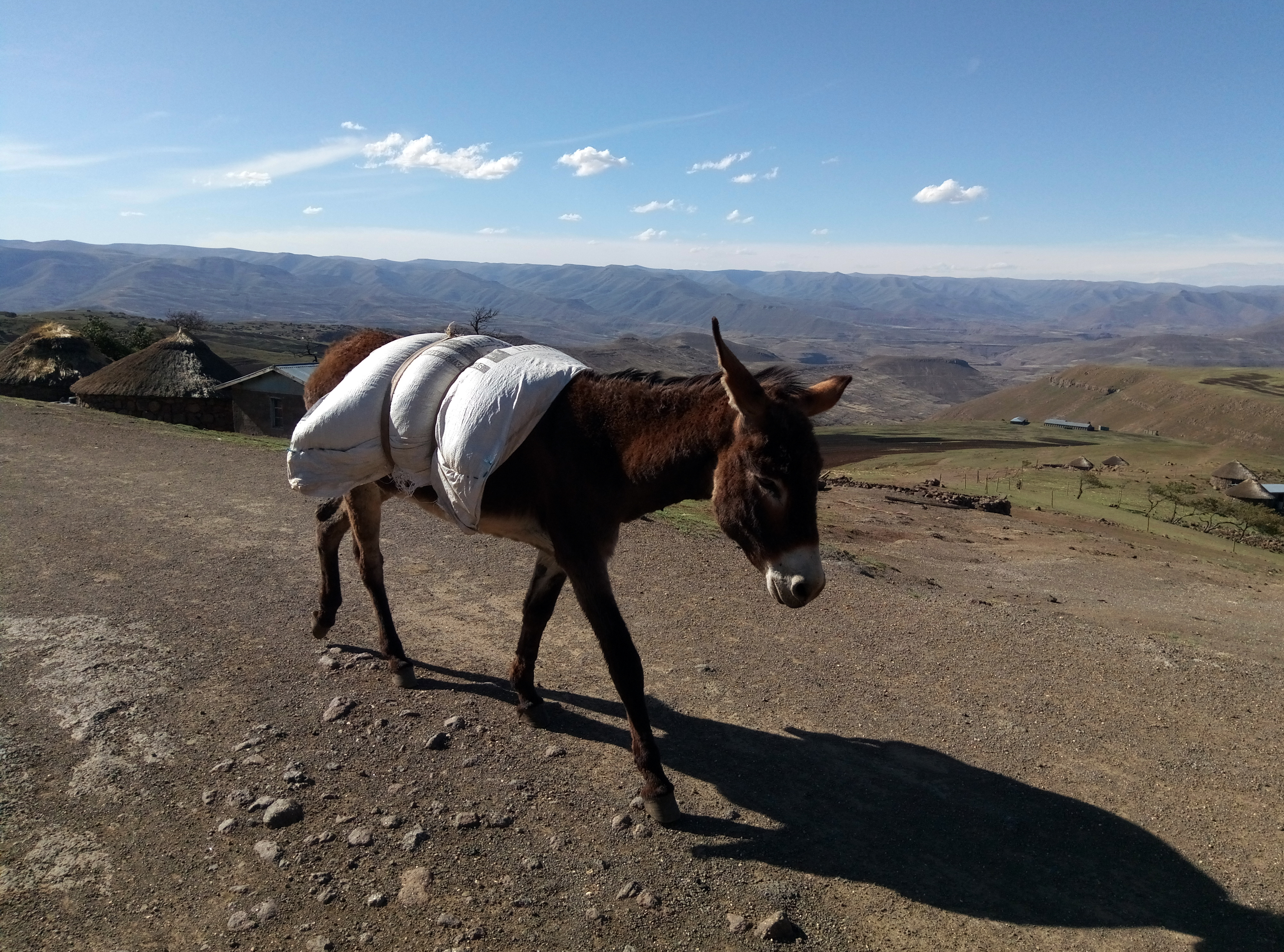 171124_Lesotho-Day2155555
