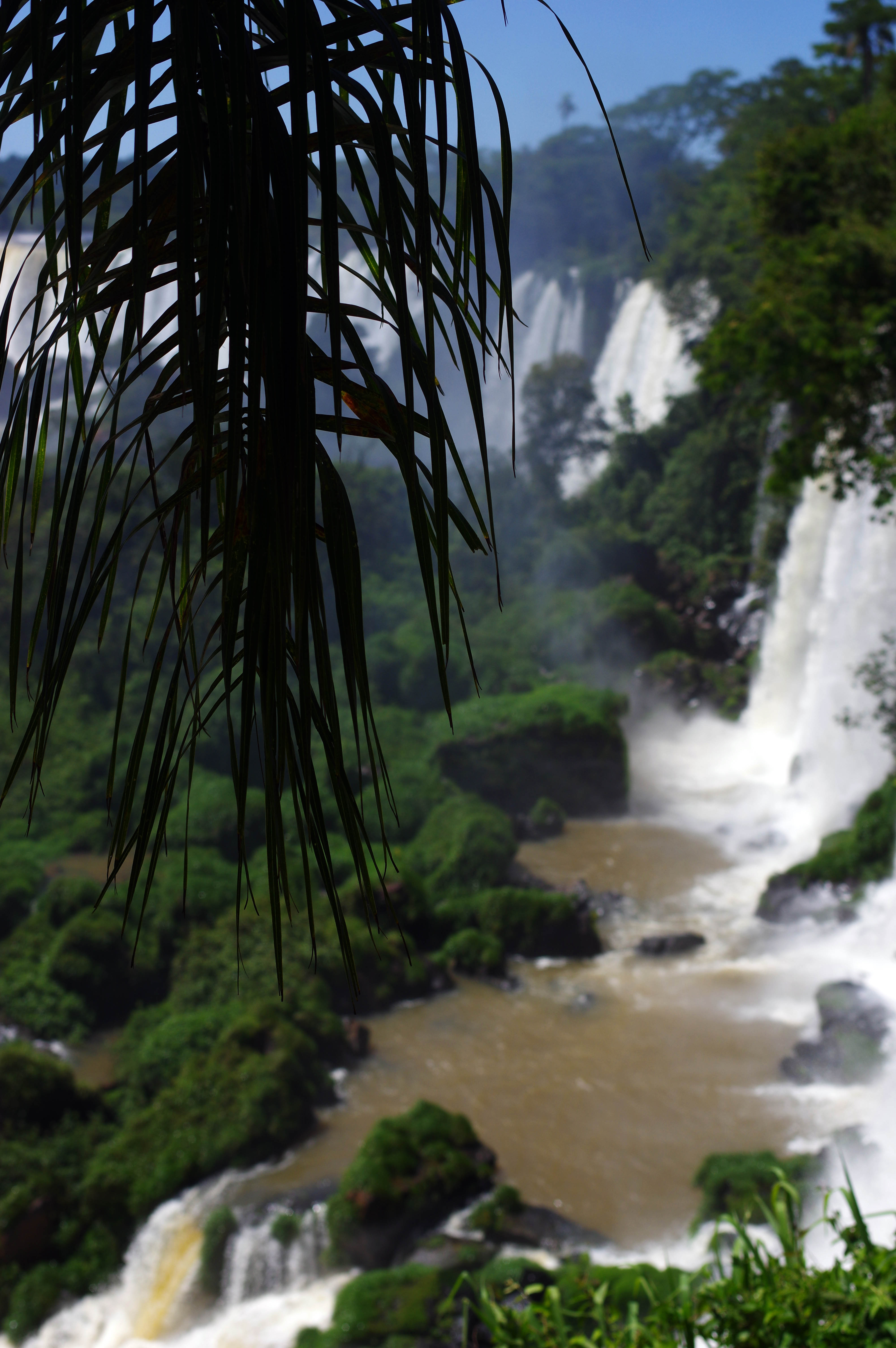 171212_Iguazu Cataratas45