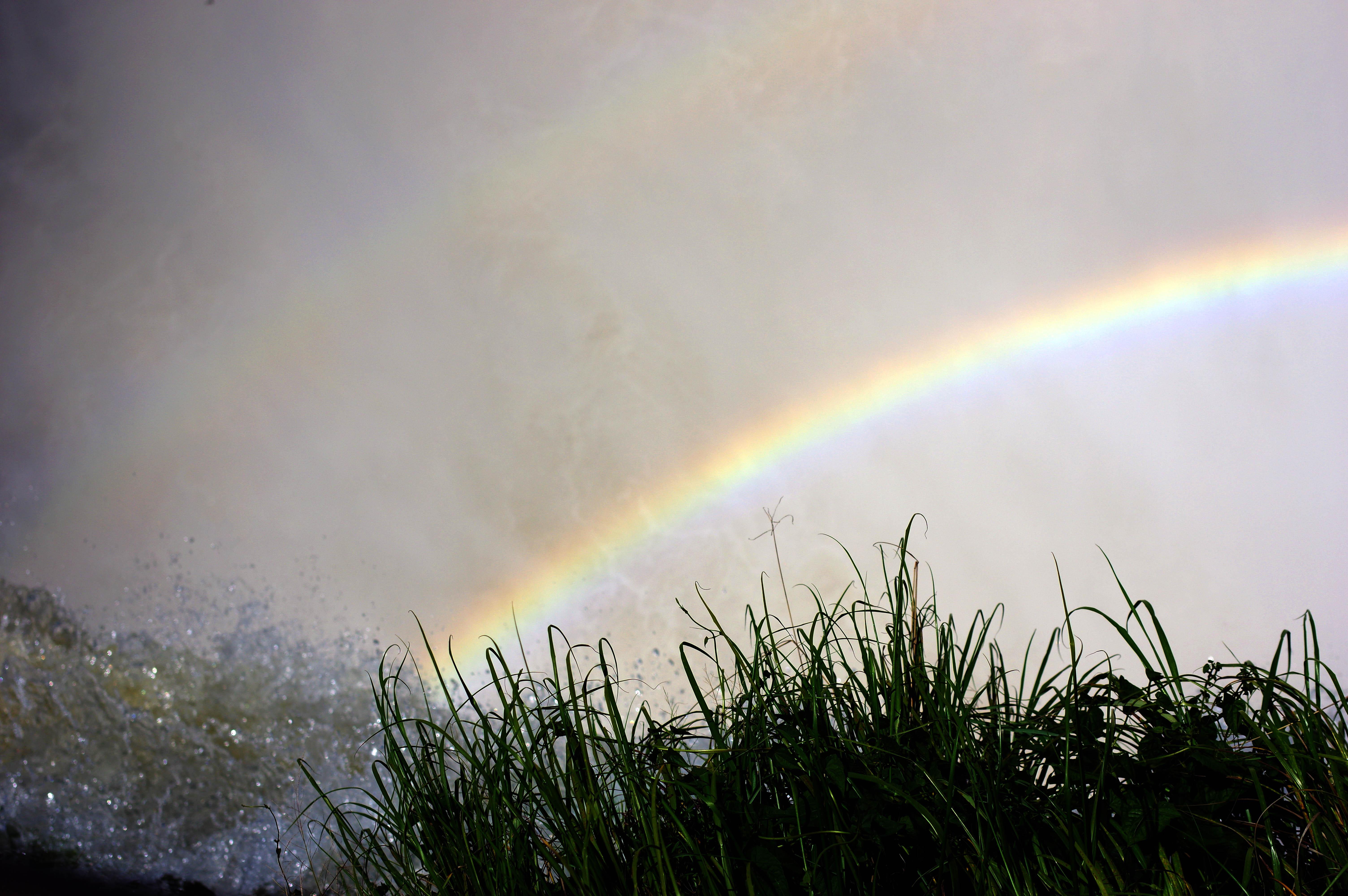 171212_Iguazu Cataratas63