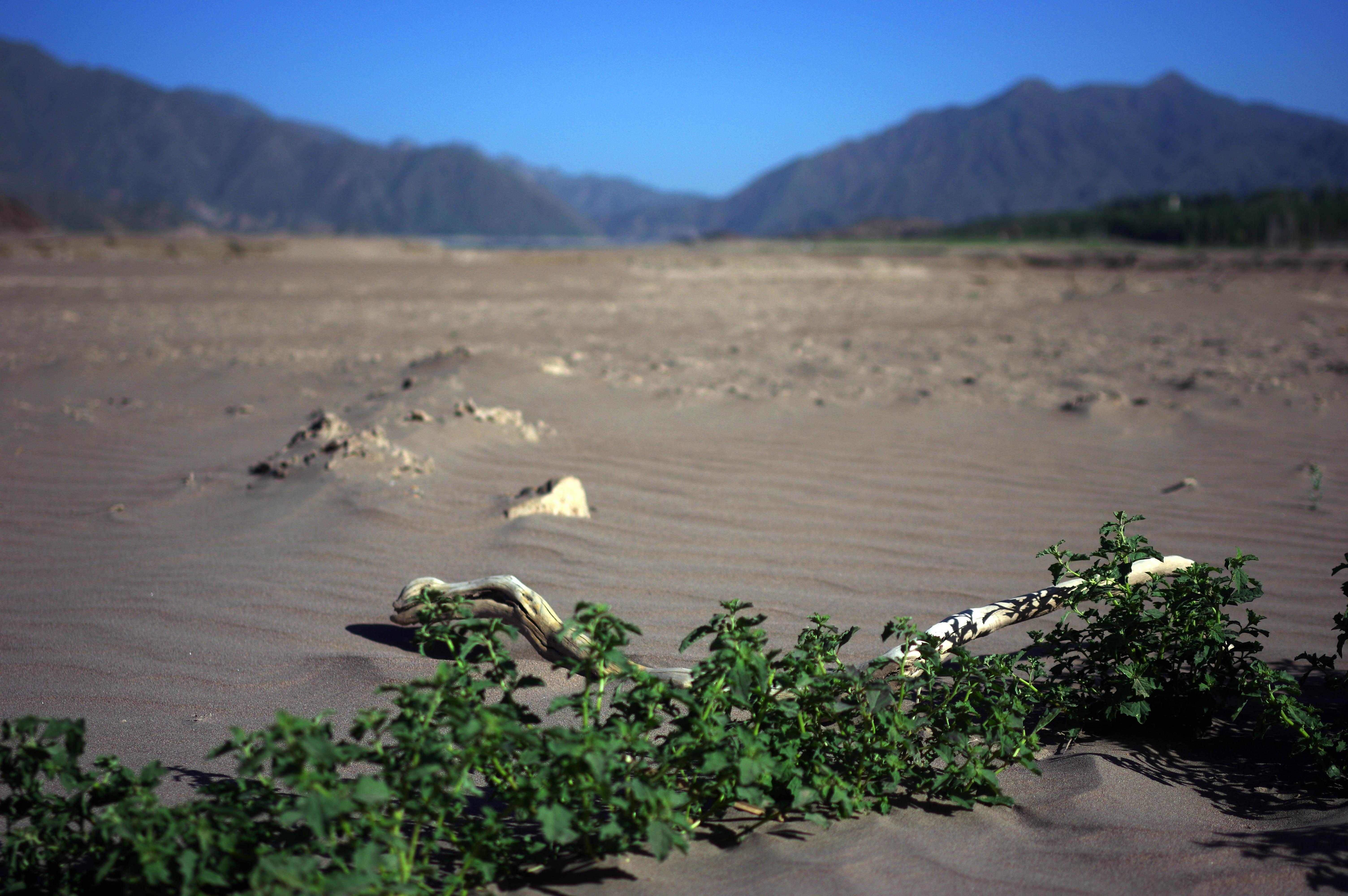 171215_Mendoza-Potrerillos94