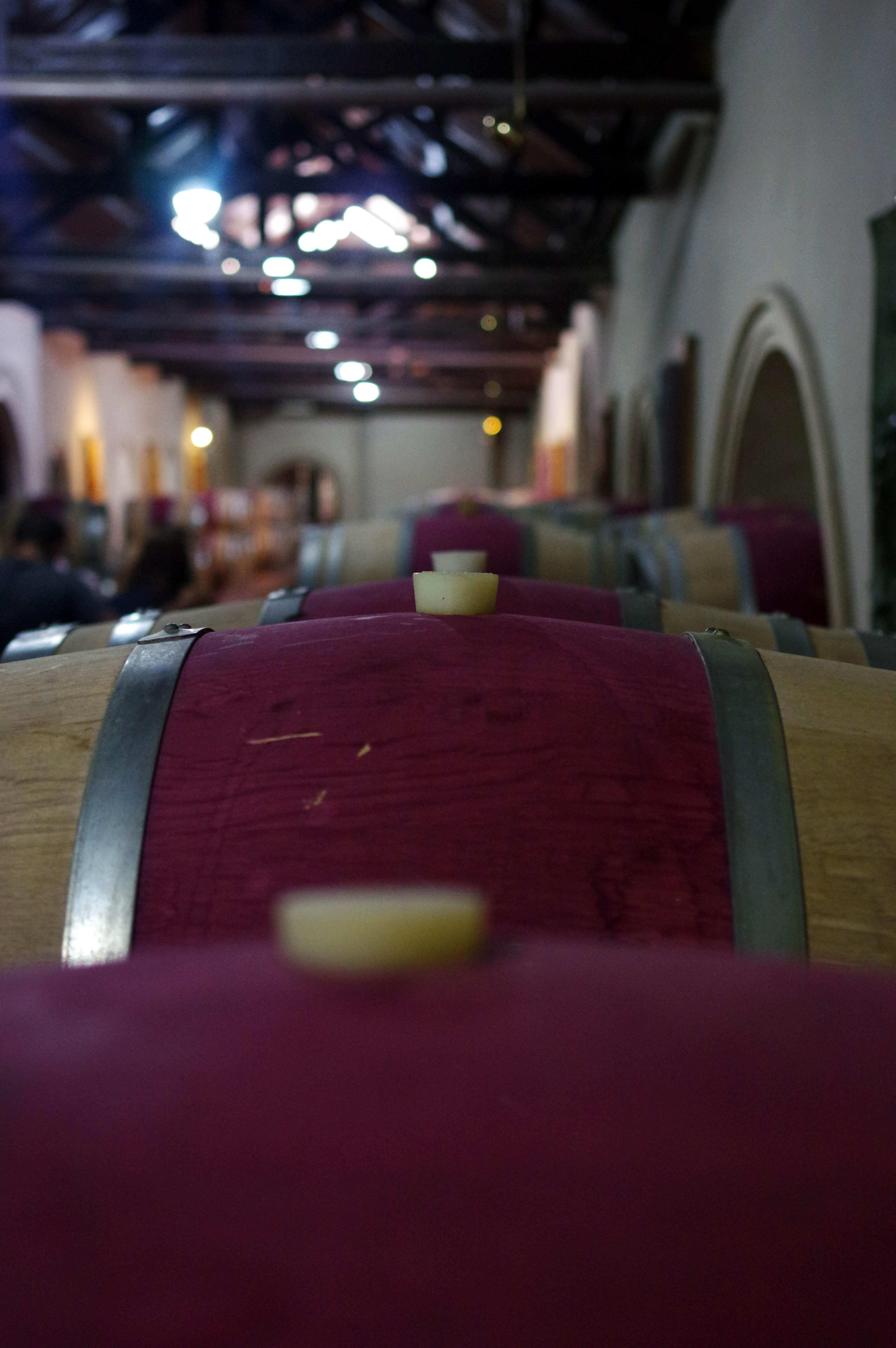 171218_Mendoza-WineTour20