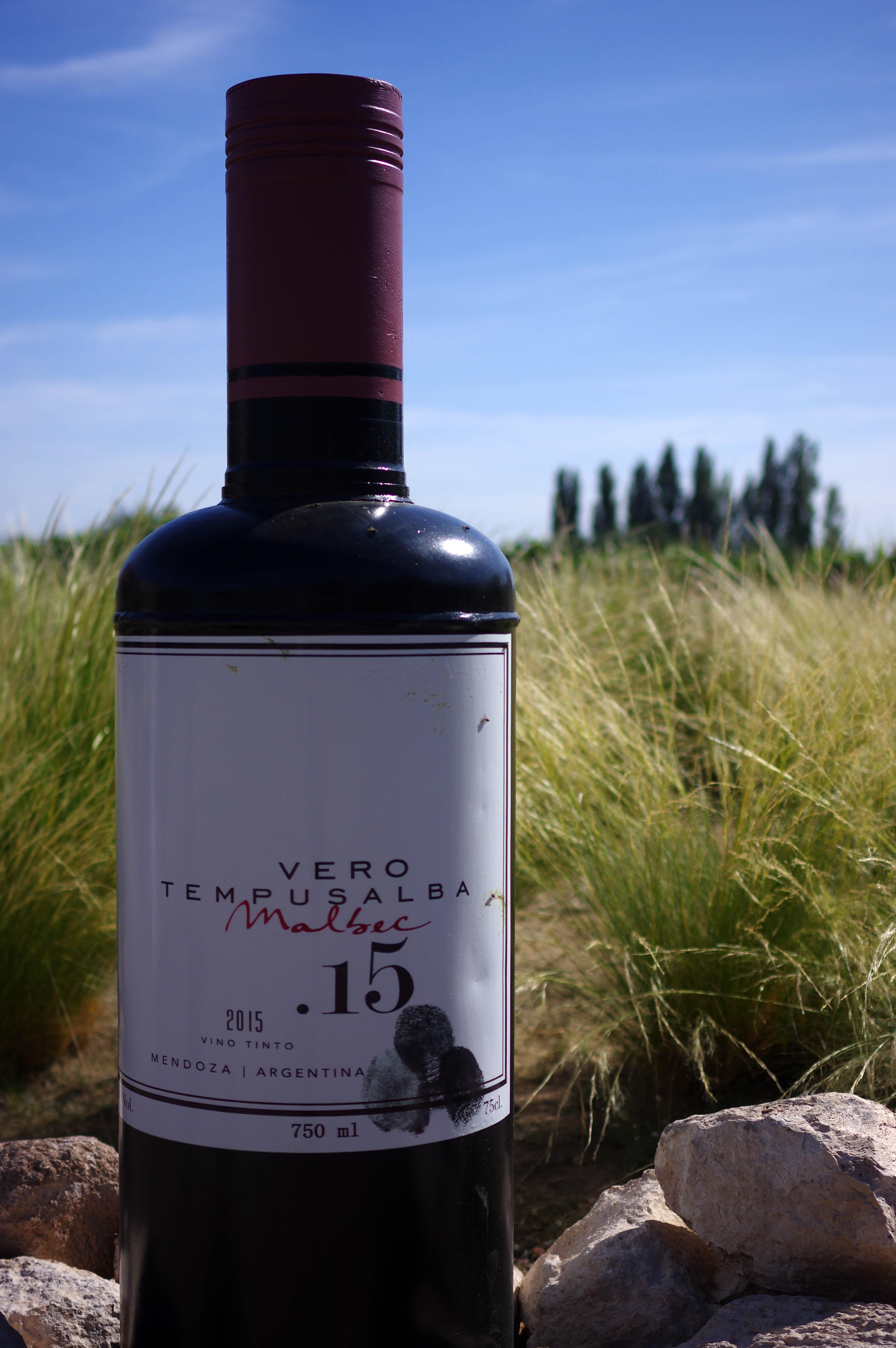 171218_Mendoza-WineTour34