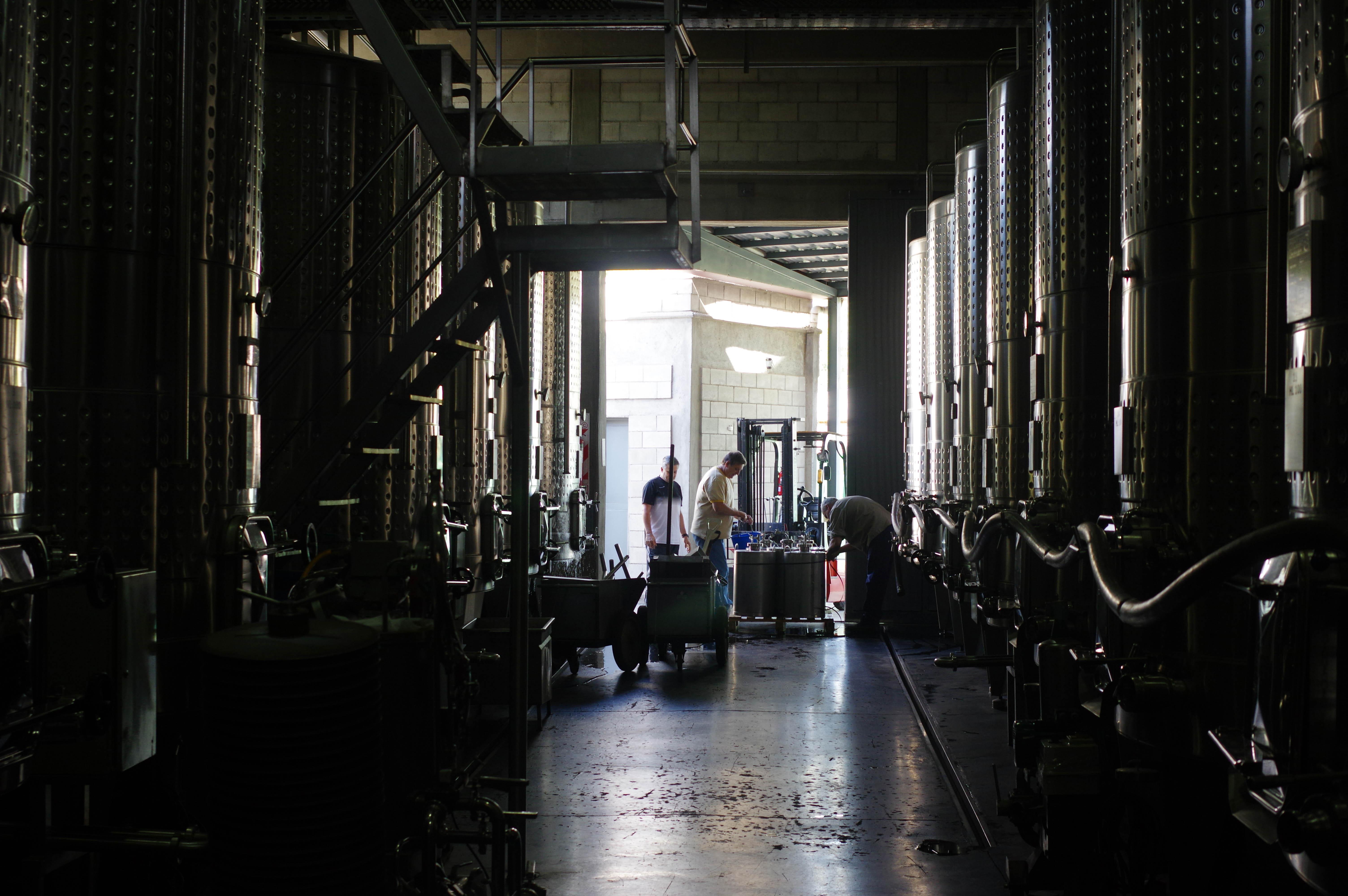 171218_Mendoza-WineTour46