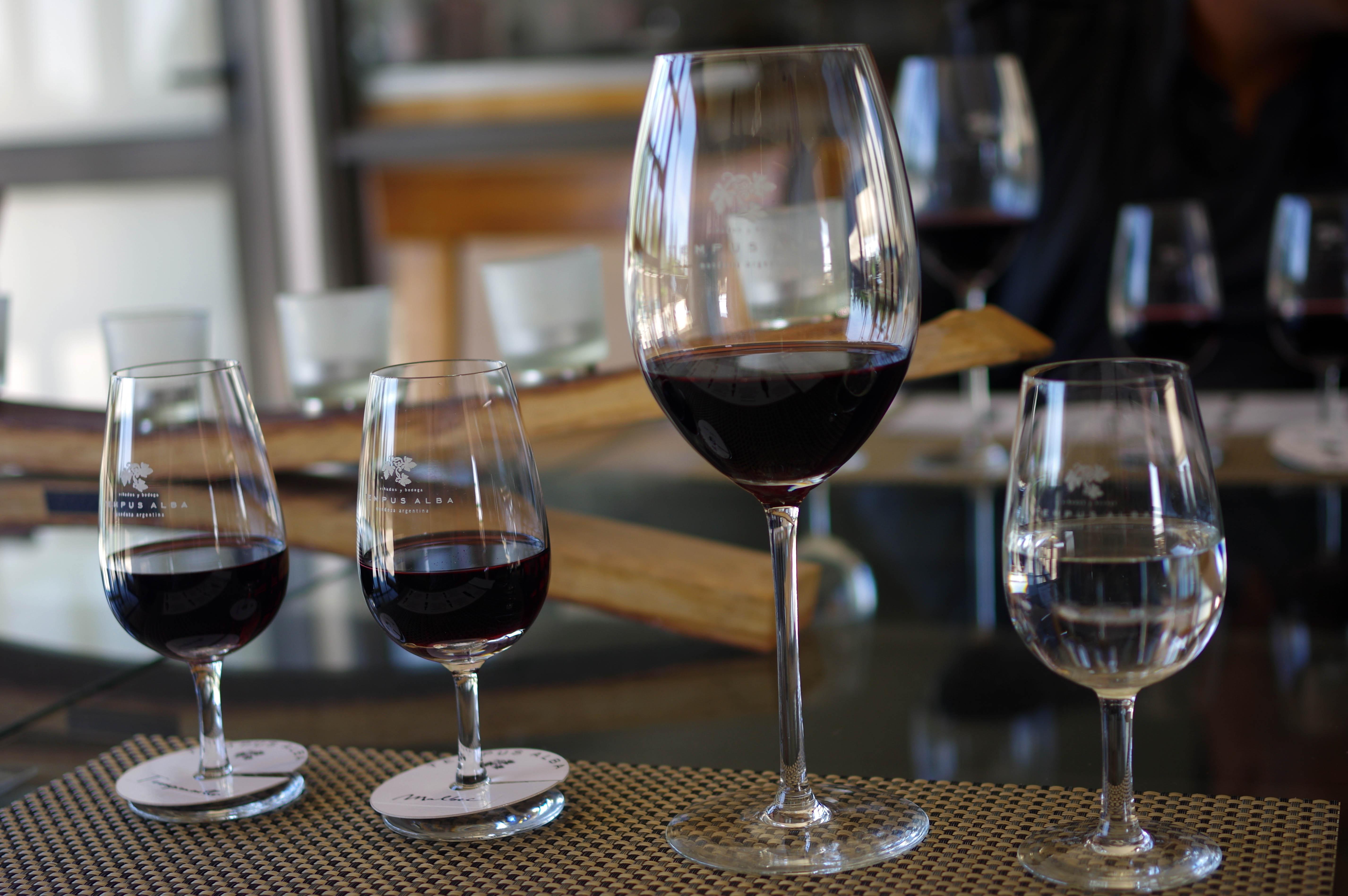 171218_Mendoza-WineTour72