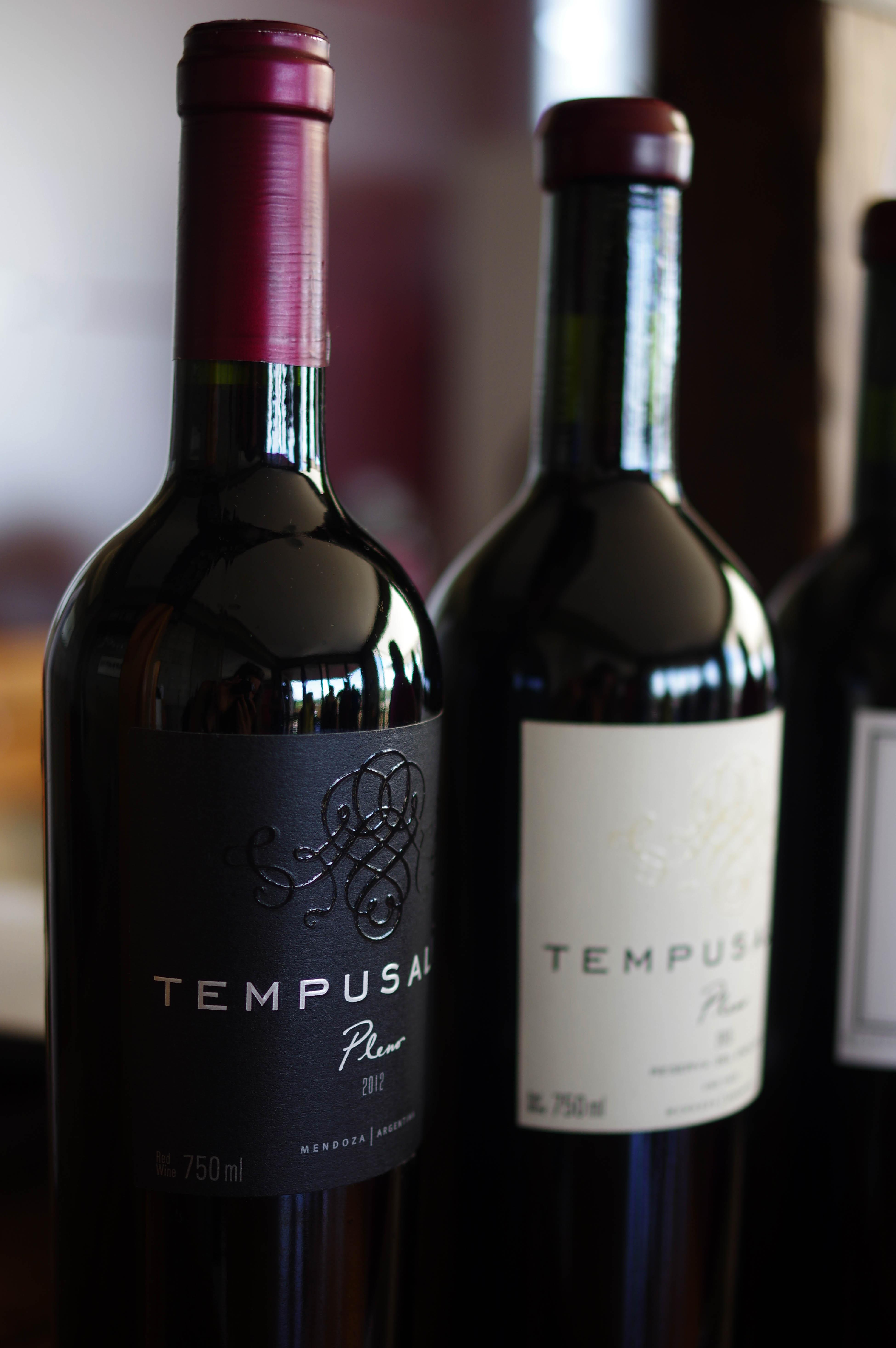 171218_Mendoza-WineTour82