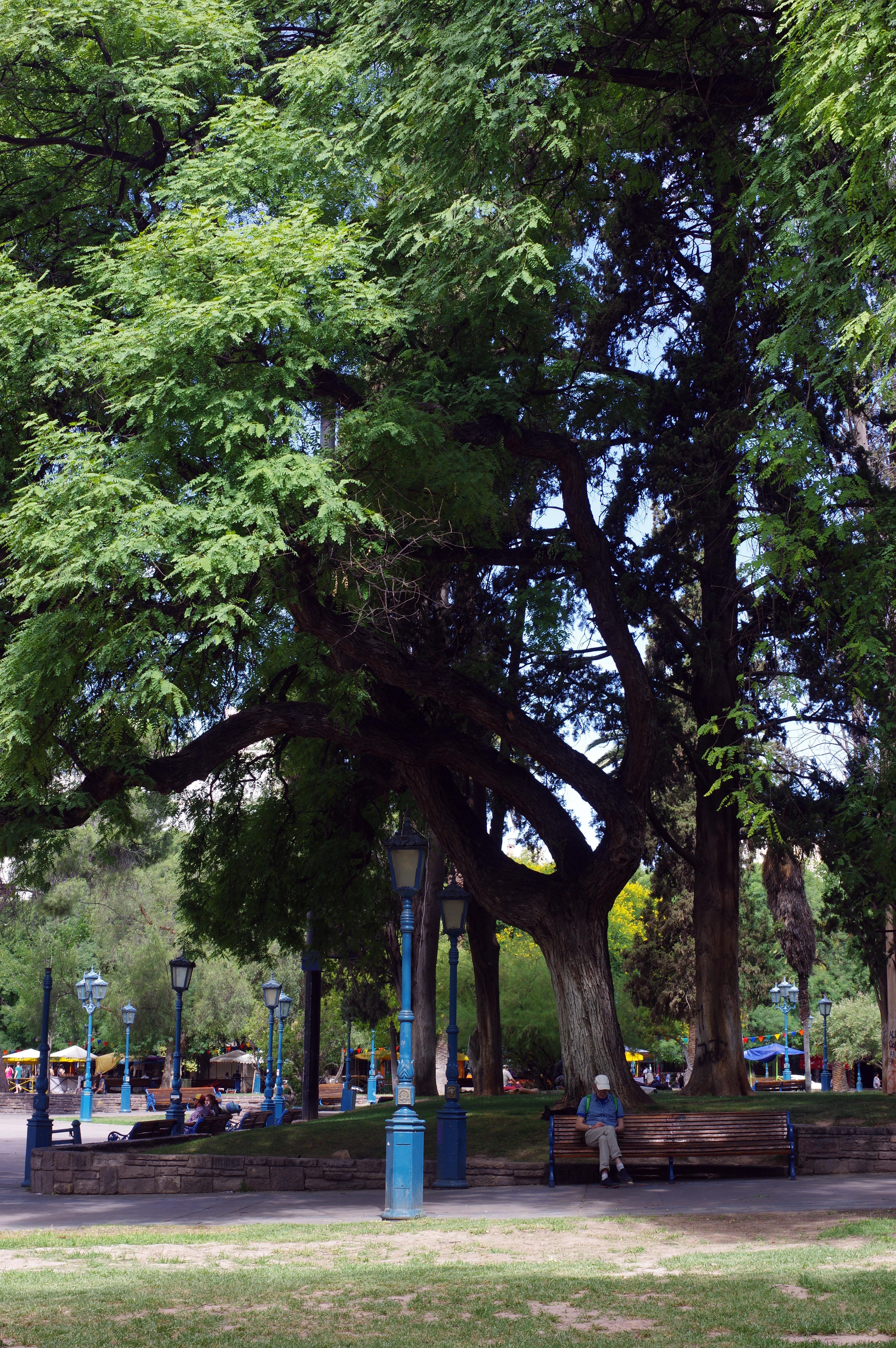 171226_Mendoza-CerrodelArco55