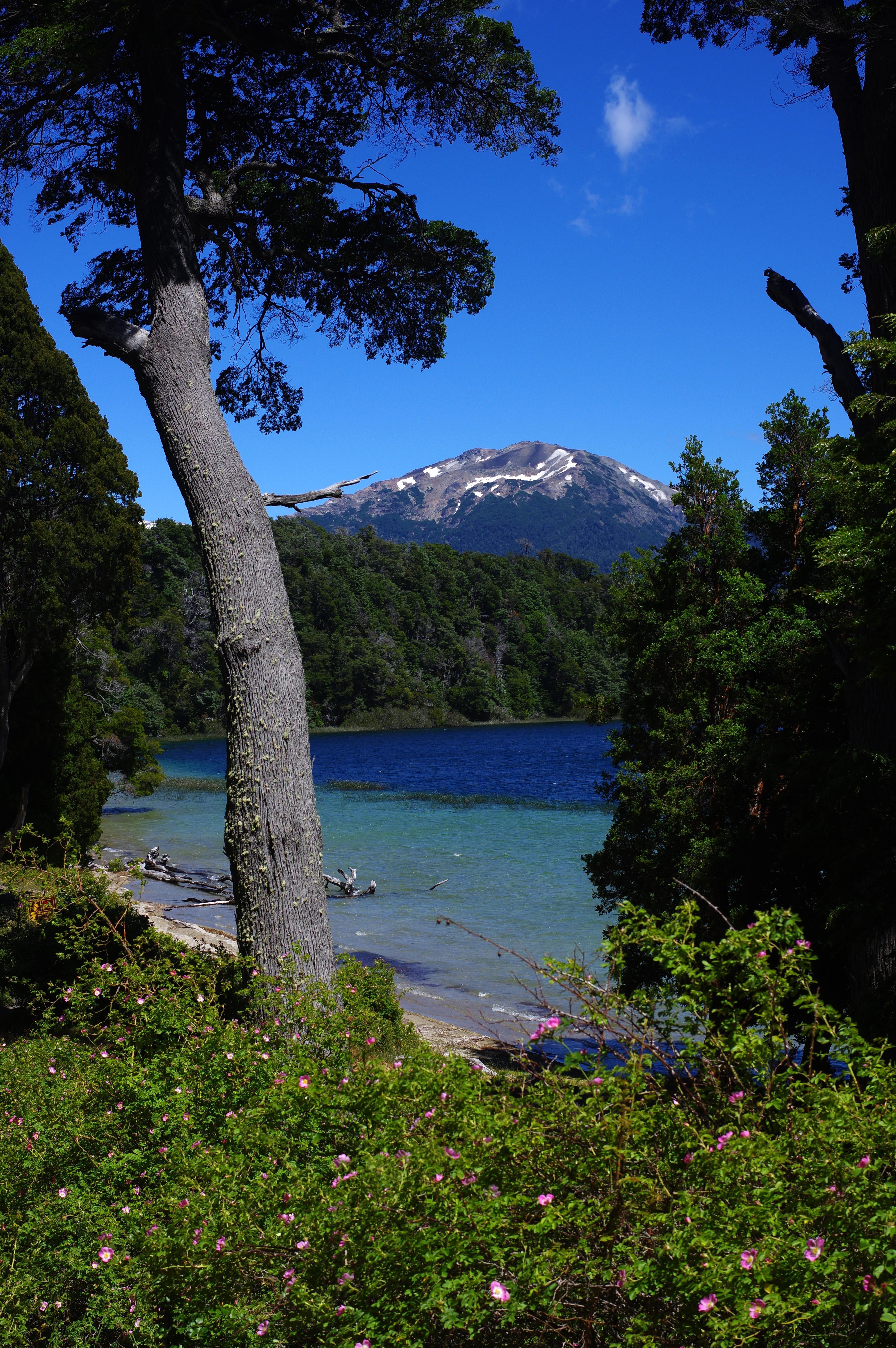 171229_VLA-Parque Arrayanes05
