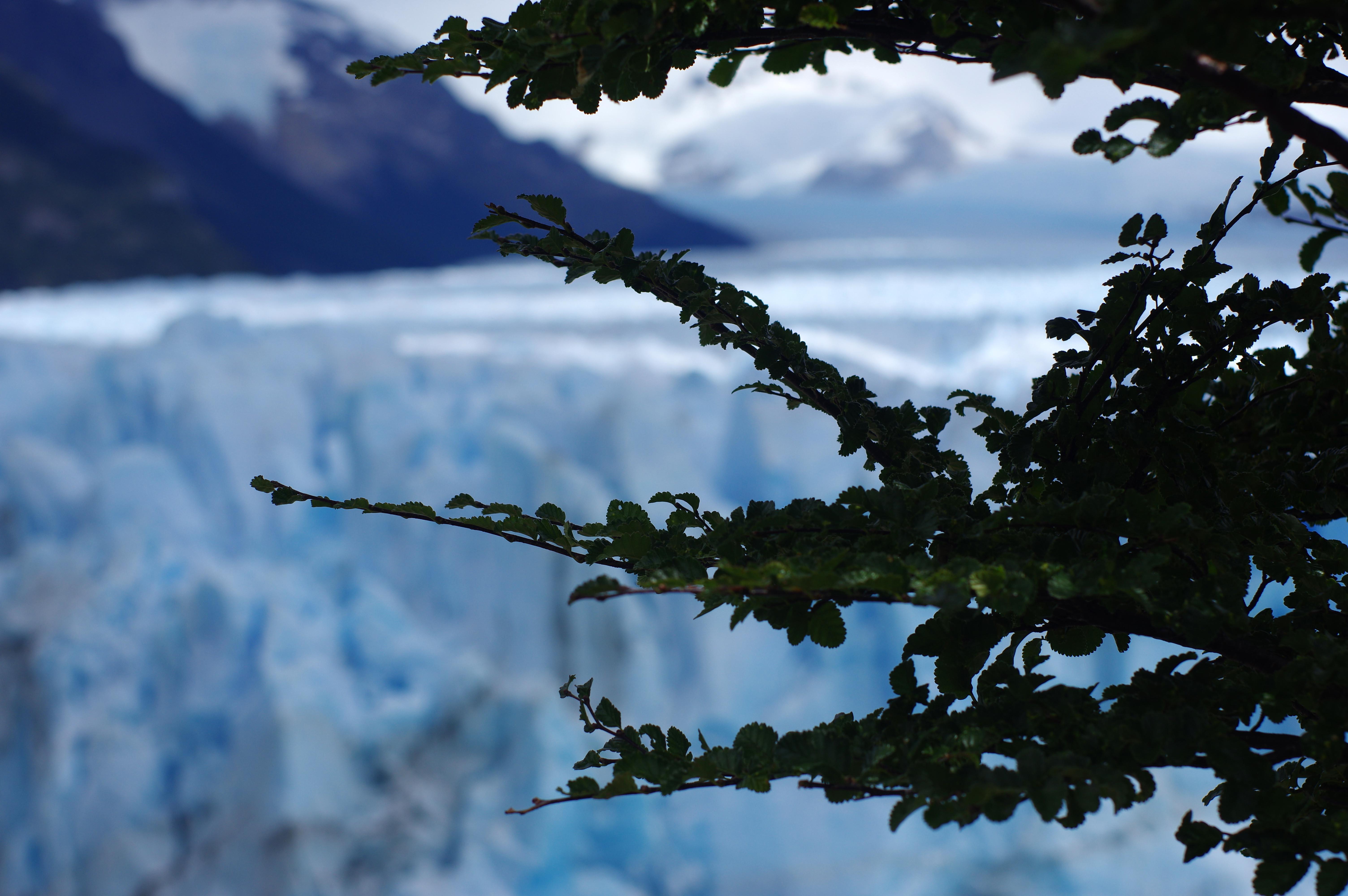 180115_El Calafate-Perito Moreno94