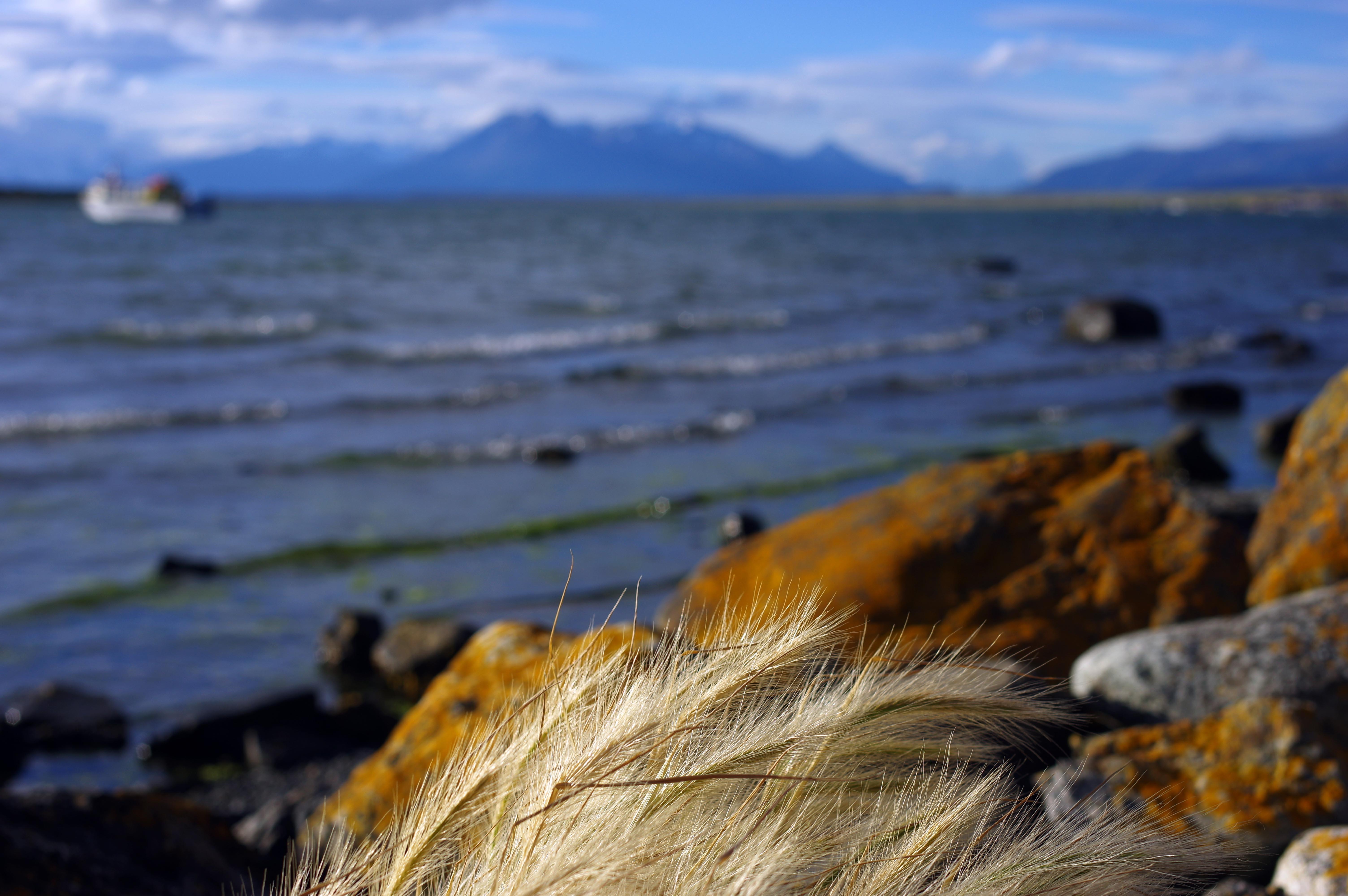 180119_Puerto Natales45