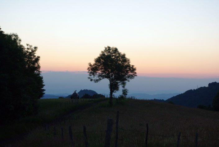 Auvergne - June 2014