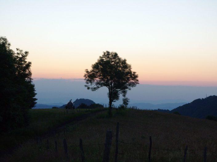 Auvergne – June 2014