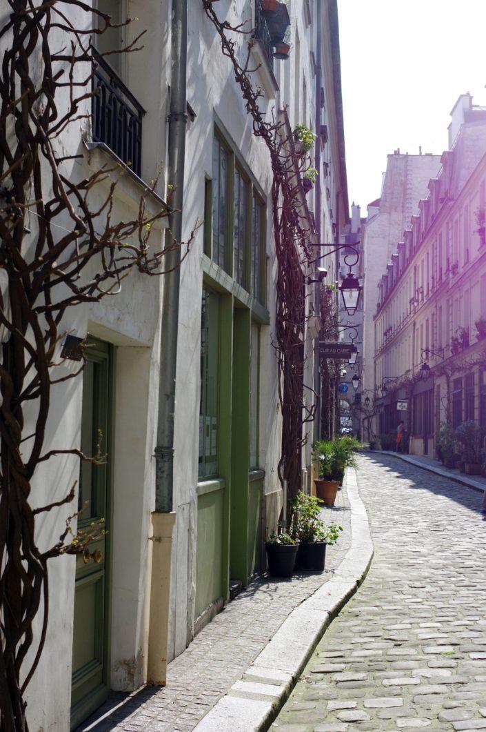 Cour Damoye - Paris - Spring 2017 © Mllepix
