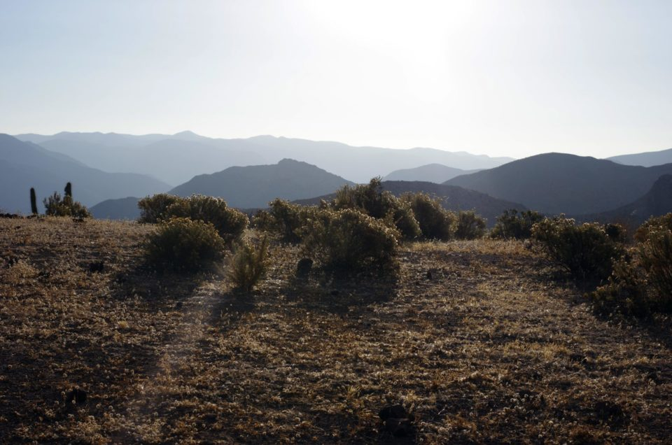 Vicuña et la magique Vallée de Elqui