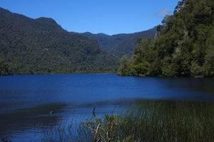 Parque Nacional Alerces Andinos © MllepixParque Nacional Alerces Andinos © Mllepix