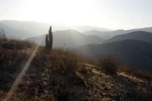 Valle de Elqui © Mllepix
