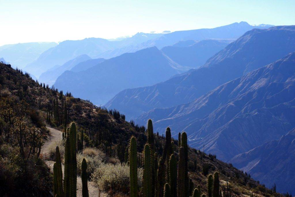 Cotahuasi canyon © Mllepix