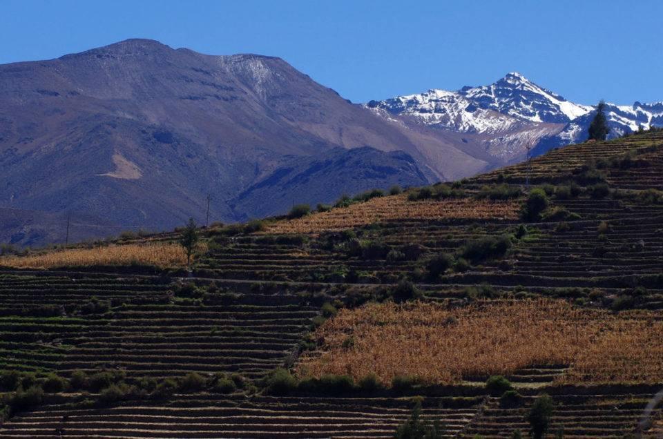 Peru: the conclusion