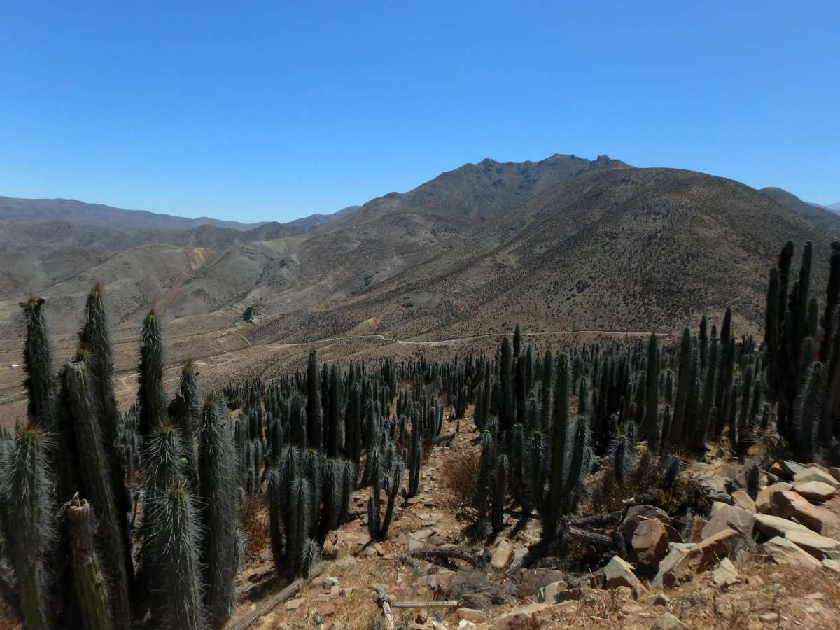 Guallaguaican - Valley of Elqui © Mllepix
