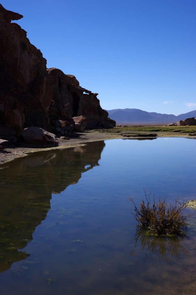 Laguna Negra - Sud Lipez - Bolivia © Mllepix