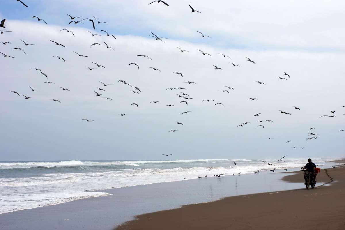Oceano Pacifico - Peru © Mllepix