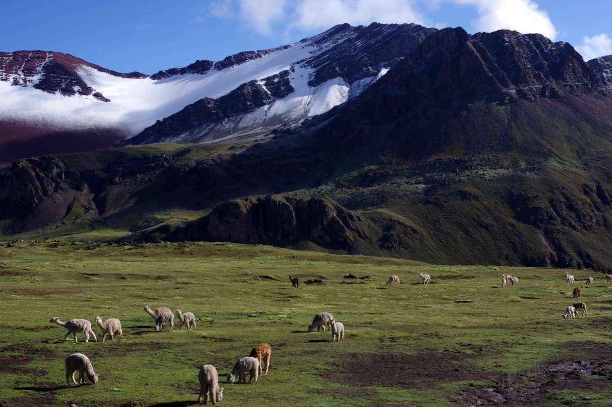 Montaña de los 7 colores - Peru © Mllepix