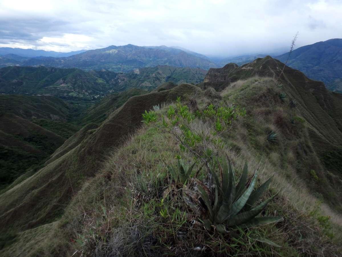 Vilcabamba - Ecuador © Mllepix