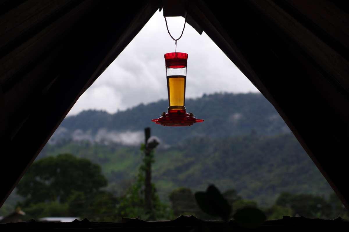 Mindo - Ecuador © Mllepix