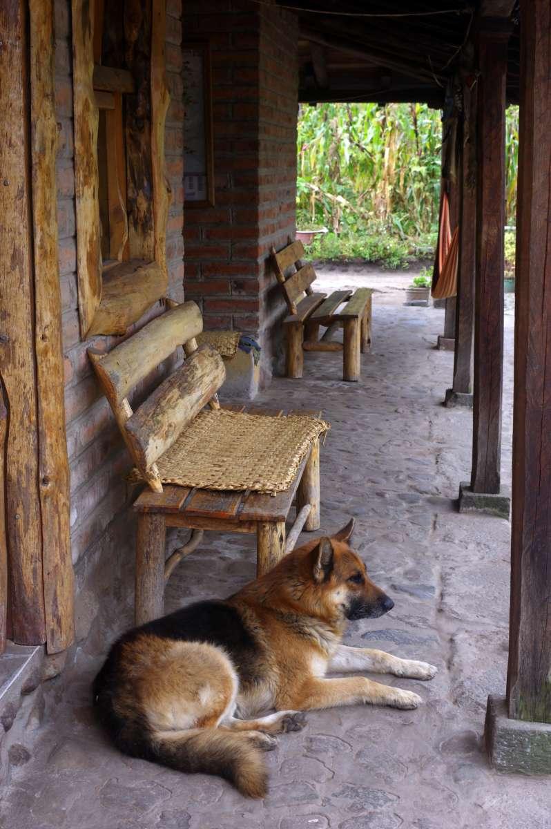 Tio Hostel - Iluman - Ecuador © Mllepix